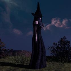 Black Witch Costume