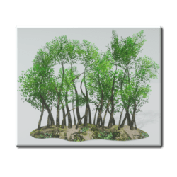 Trees-Line With Ground