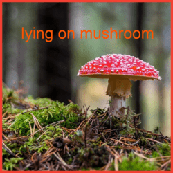 lying on mushroom