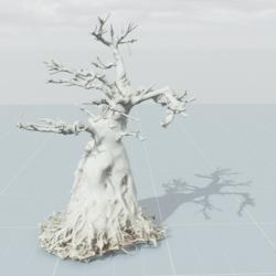 Dead Tree 6