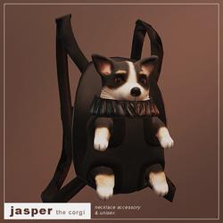 Jasper (Corgi)