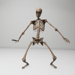 Hip Hop Dancing skeleton