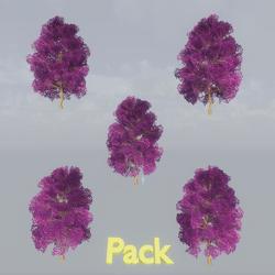 Maple Tree Pack Purple