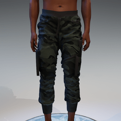 Cargo Pants for male in camouflage