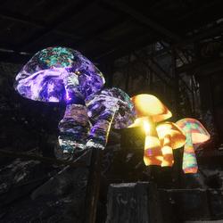 Hippy Mushroom Set 3