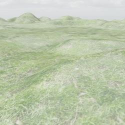 Grass Terrain