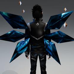 Cir wings illusion