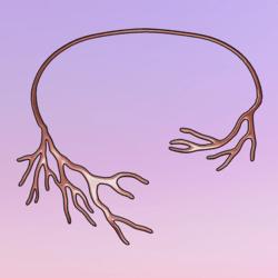 Bare Tree Choker Rosegold