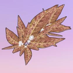 Golden Leaves One Side Left Brown