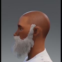 Long Beard Alpha (DEMO WIP)