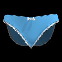 Silky Dreams Lace Underwear 06