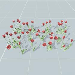 Tulips set 9