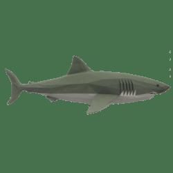 Onward Shark
