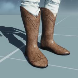 Cowboy Boots POLISHED