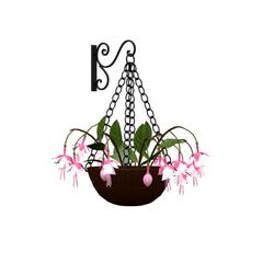 Fuchsia flower basket 2