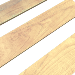 Plank FP