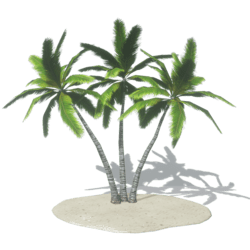 Palm Island 1