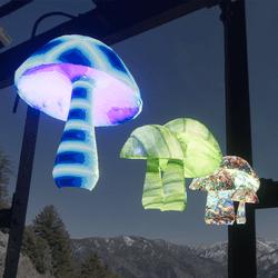 Hippy Mushroom Set 5