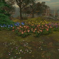 Colorful Flower Set