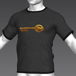 Ready Player One: Copper Key T-Shirt (Grey) (M)