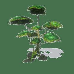 Fantasy Tree with Rocks