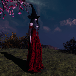 Red Witch Costume