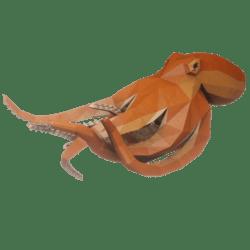 Speeding Octopus