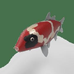 Carp koi - Doitsu [Animated]