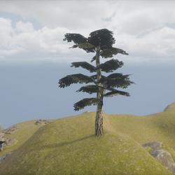 Dark Tree - Small Simple Tree ++ Einfacher dunkler Baum