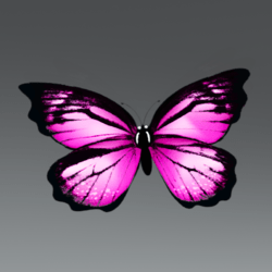 Glowing Animated Butterfly pet [Earing slot]