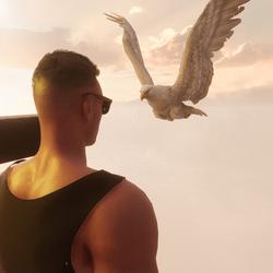 Adler mit Animation
