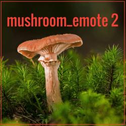 mushroom_emote 2