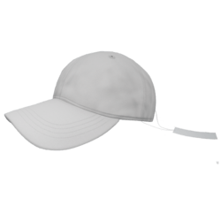 Baseball Hat With Tag
