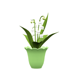 potted lily of the valley