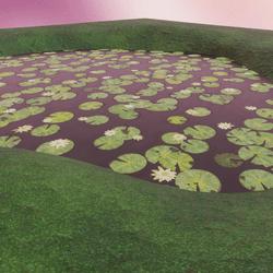 Realistic Pond