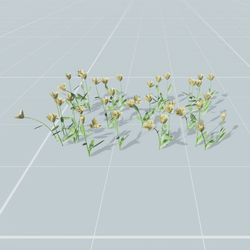 Tulips set  7