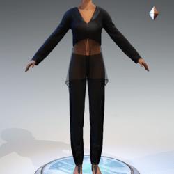 Sheer Tunic Suit - Black Wool