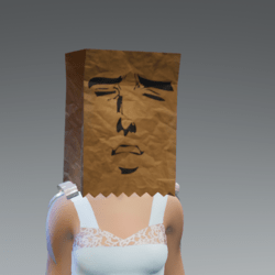 paper bag hat meme