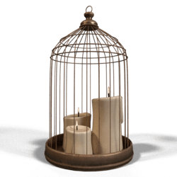 Candle Cage Animated