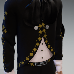 MARIACHI   OUTFIT_ D