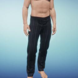 Striped Midnight Pants