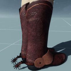 Cowgirl Boots with Spurs
