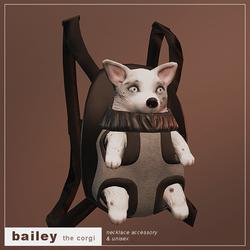 Bailey (Corgi)