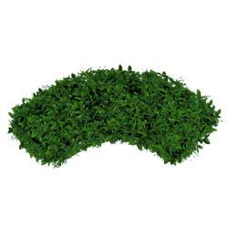 Hedge Curved - Green