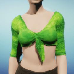 Green Silk Tied Crop Top