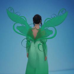 Wings - Olinda - Spring