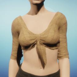 Woven Tan Tied Crop Top