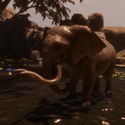 Elephant Animation Idle tex