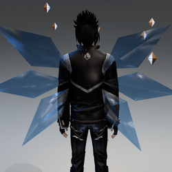 Cir wings transp