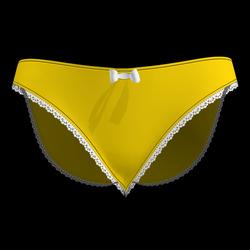 Silky Dreams Lace Underwear 10